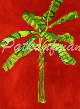 tropical gardens and flora paintings I Banana