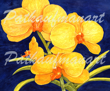 tropical gardens and flora paintings Orchids II
